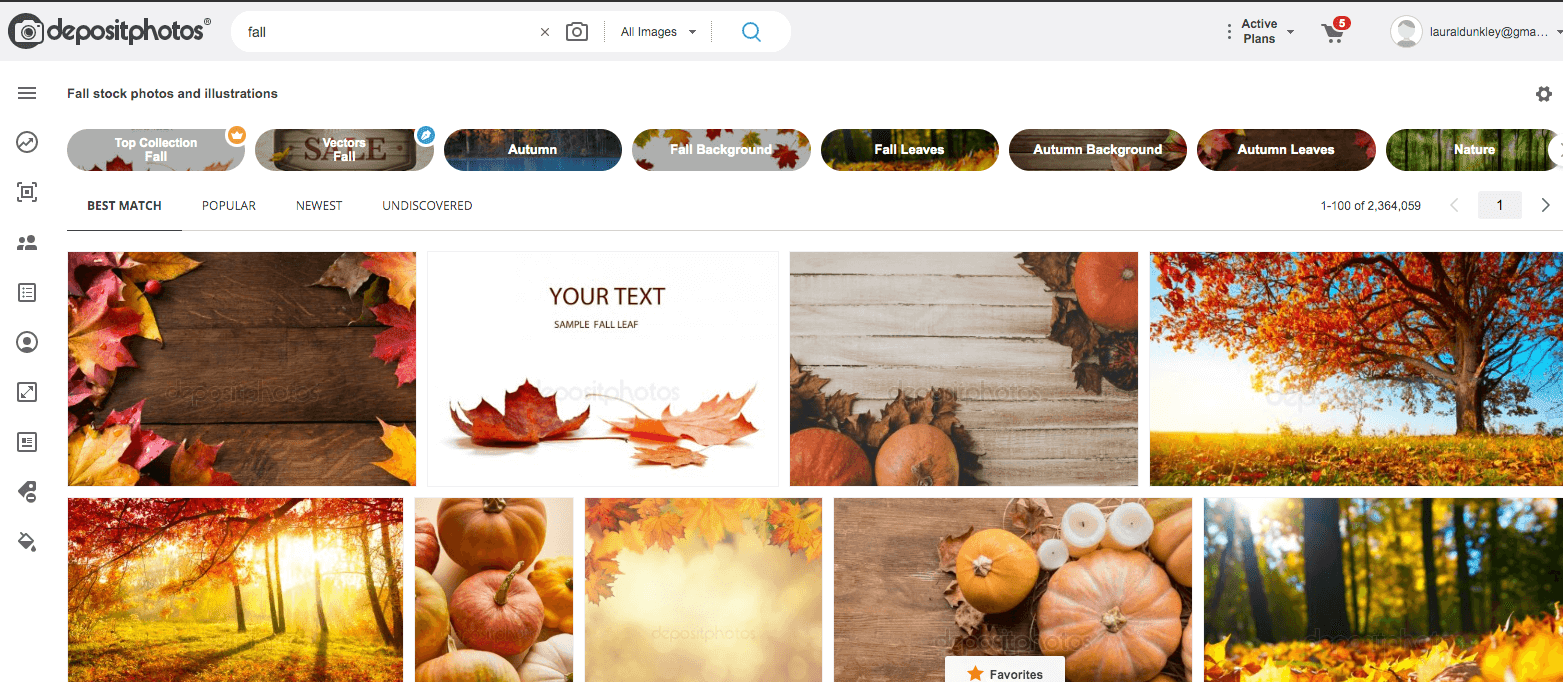 LDC Blog Stock Photos Fall